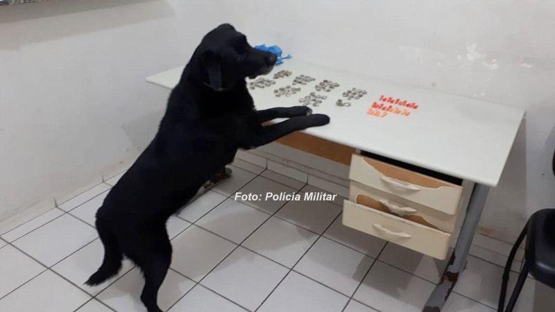 O cão farejador ajudou a localizar o restante do entorpecente.