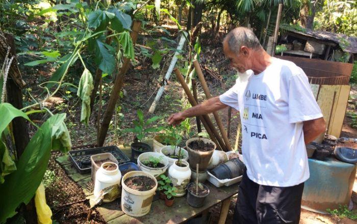Guardião da floresta: produtor agroecológico quer proteção para as nascentes e cachoeiras