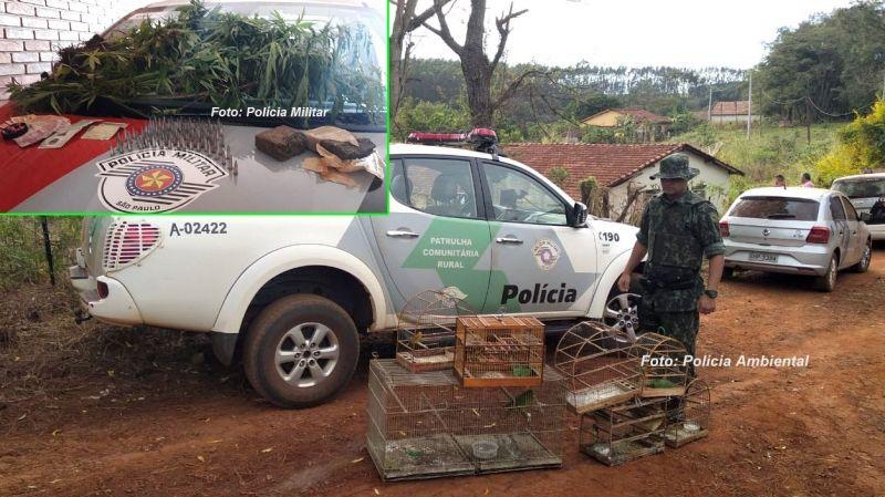 Drogas e as aves que foram apreendidas durante a operação.
