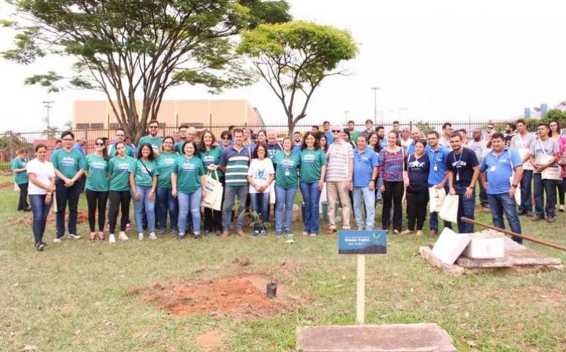 Com apoio da Prefeitura, Unimar realiza plantio de árvores nativas