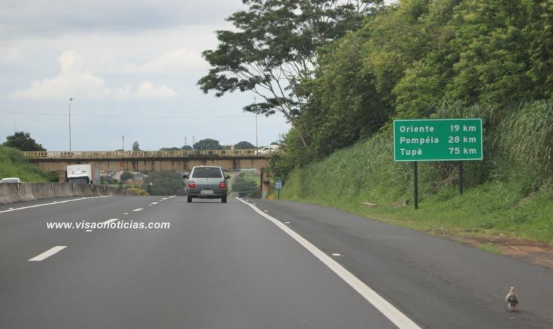 Entrevias encerra Operação Corpus Christi sem acidentes graves na região