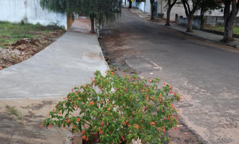 Melhorias: Prefeitura segue na construção de calçadas