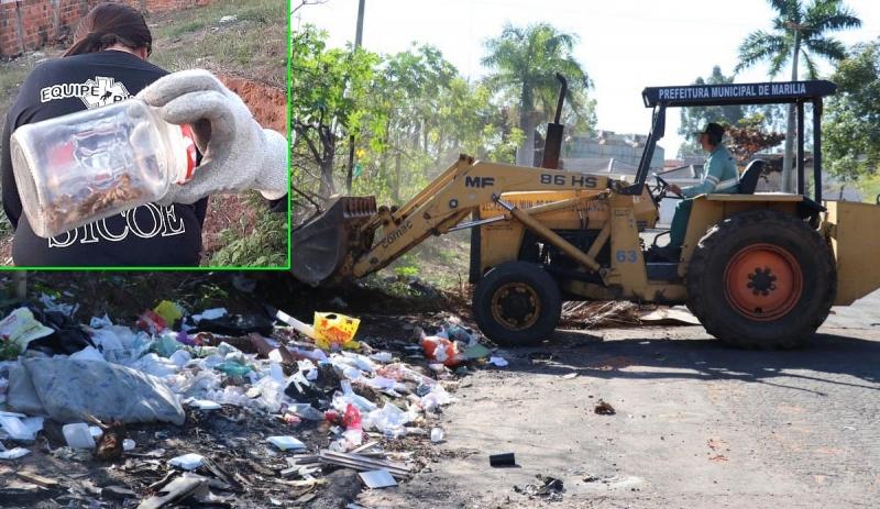Prefeitura de Marília faz mutirão em área infestada por escorpiões