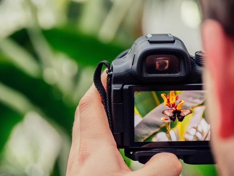 Encontro de Fotógrafos será realizado na região