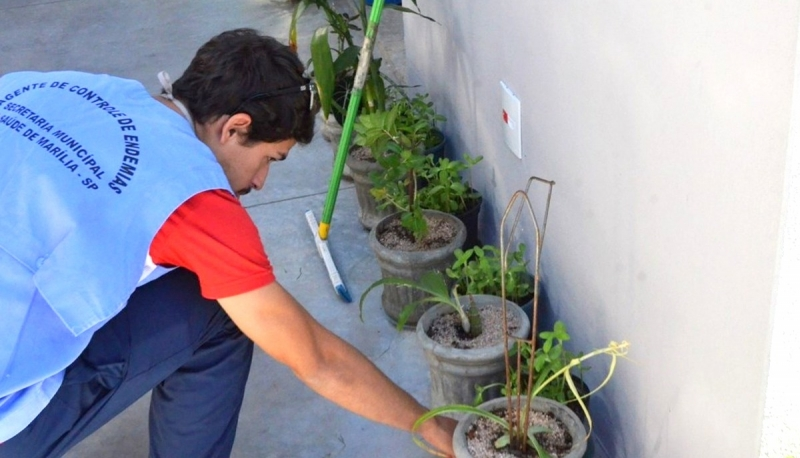 Marília registra os primeiros casos de dengue neste ano