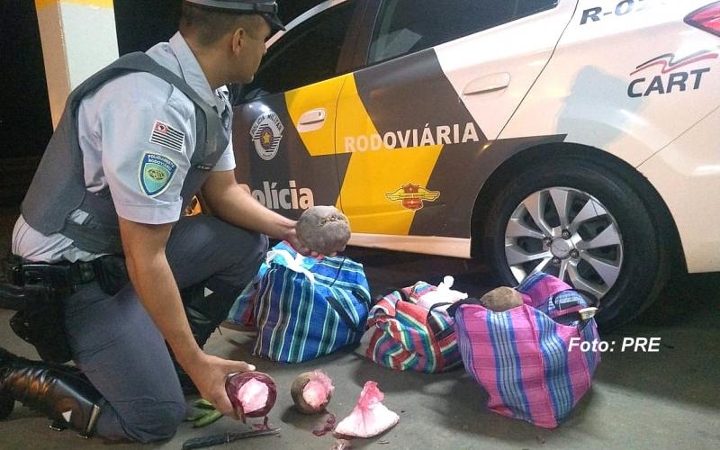 Bolivianos que transportavam cocaína em beterrabas são presos na região