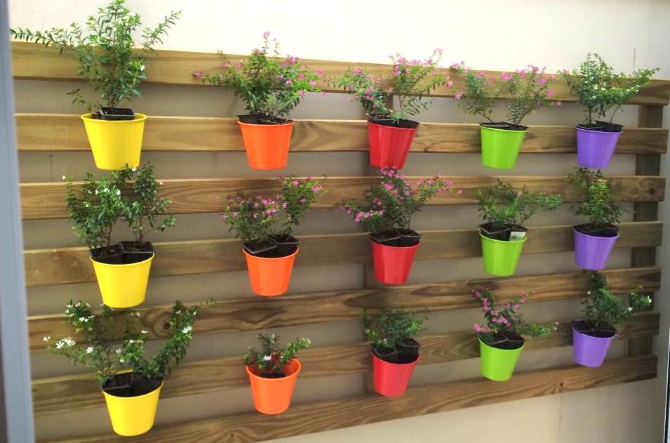Jardins Verticais: aproveite as paredes! Vis?o Not?cias